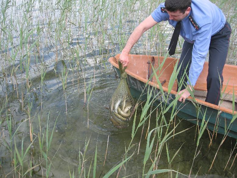 zvejybos taisykles