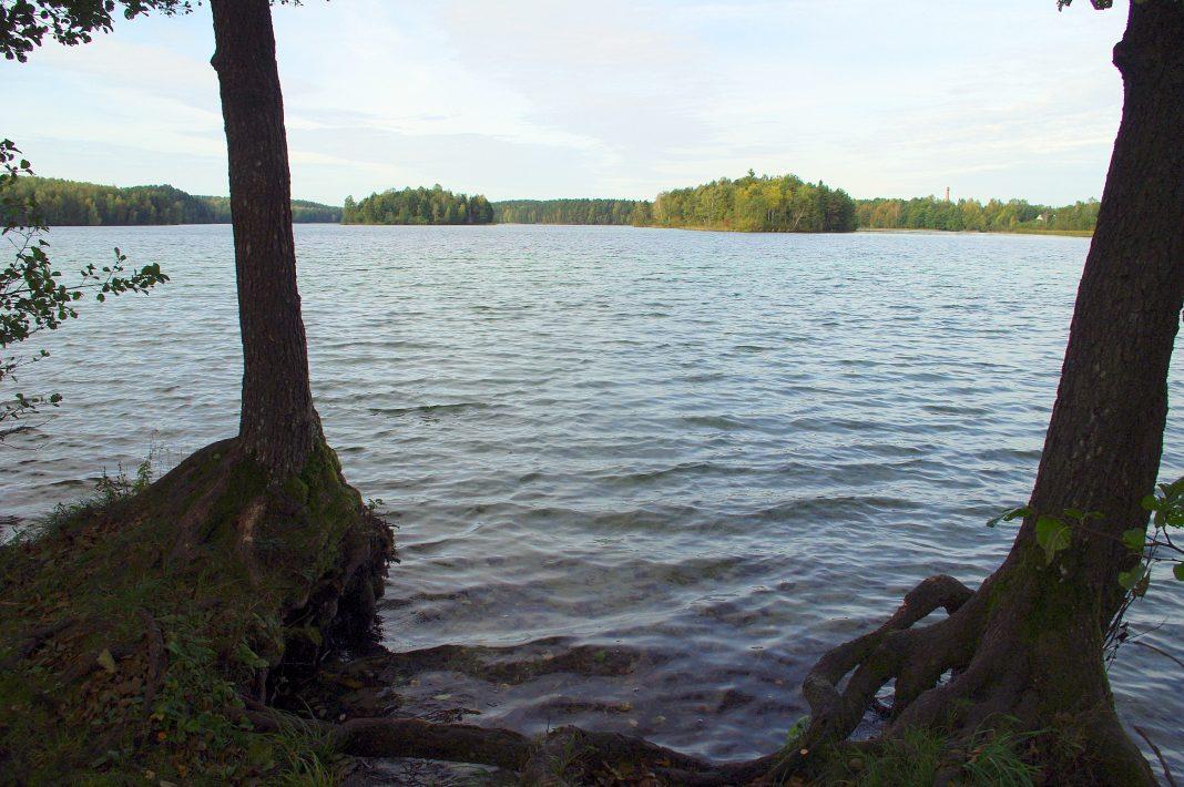 siesartis ezeras