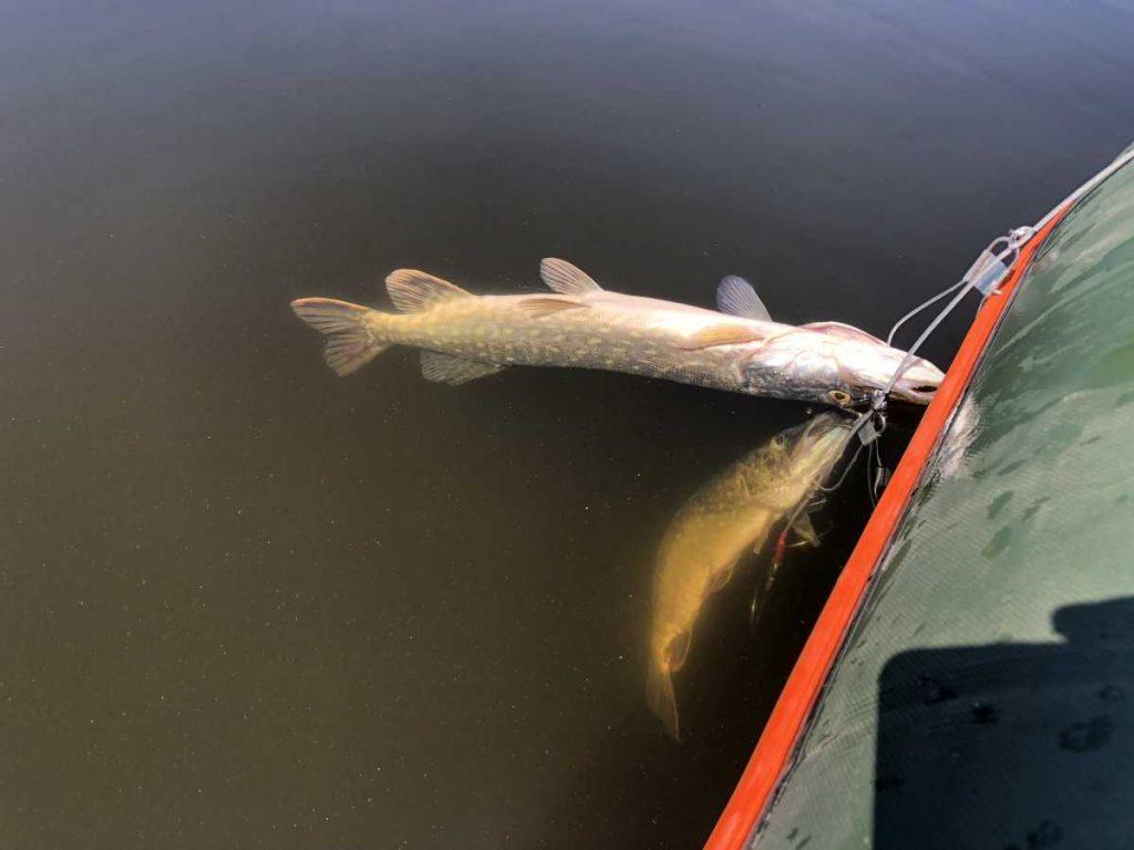 zvejyba ezeruose