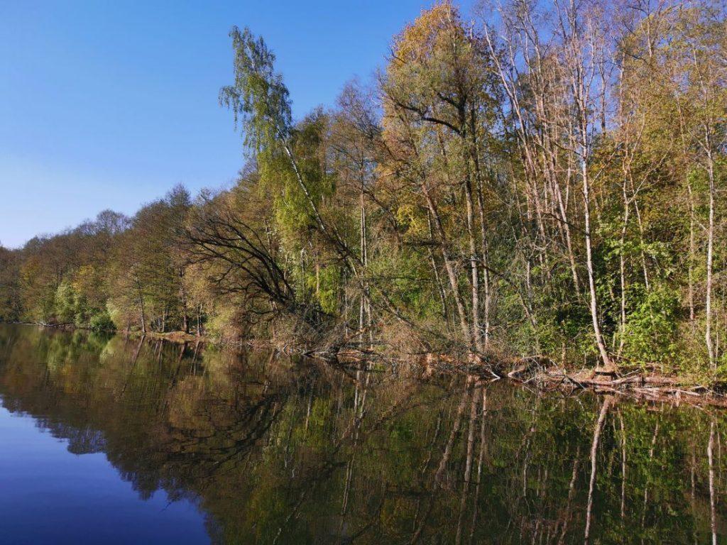lipšys ezeras