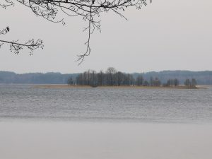 alauso-ezeras