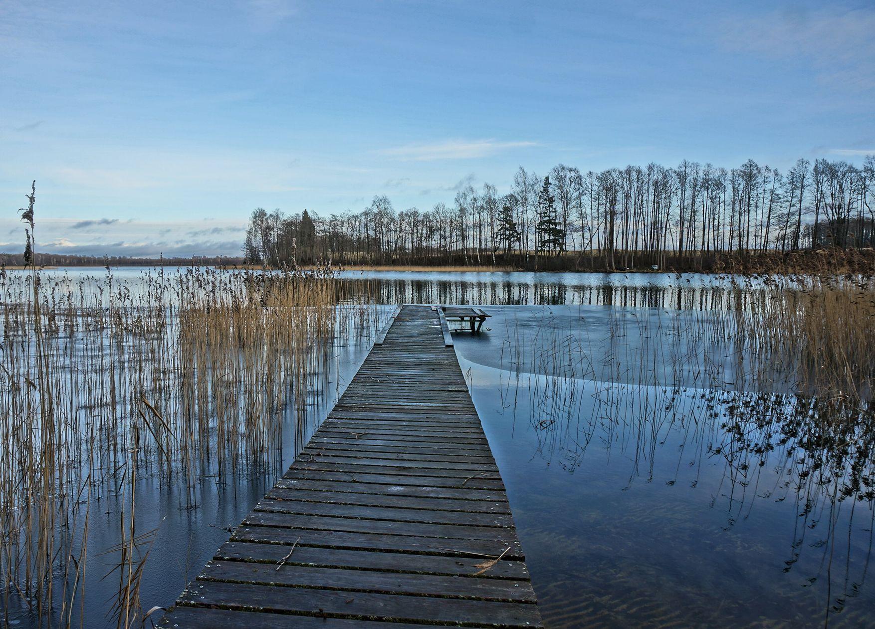 avilys ezeras