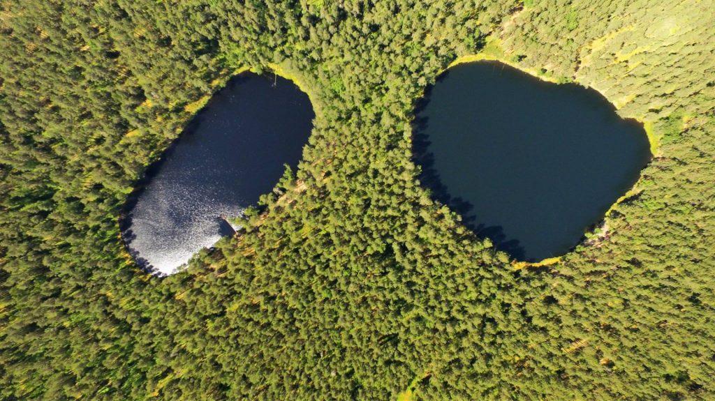ignalinos ezeru nuomininkai