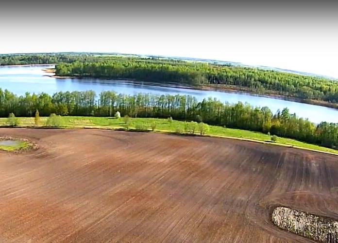 suosa jurgiskio ezeras
